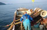 びわ湖の漁業を取り戻す外来魚対策 水産資源をまもるための滋賀県の取り組み