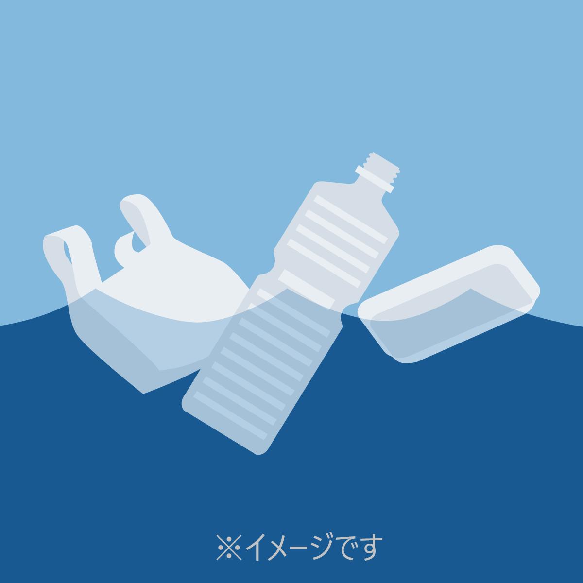 赤野井湾でプラスチックごみの実態把握調査が行われました