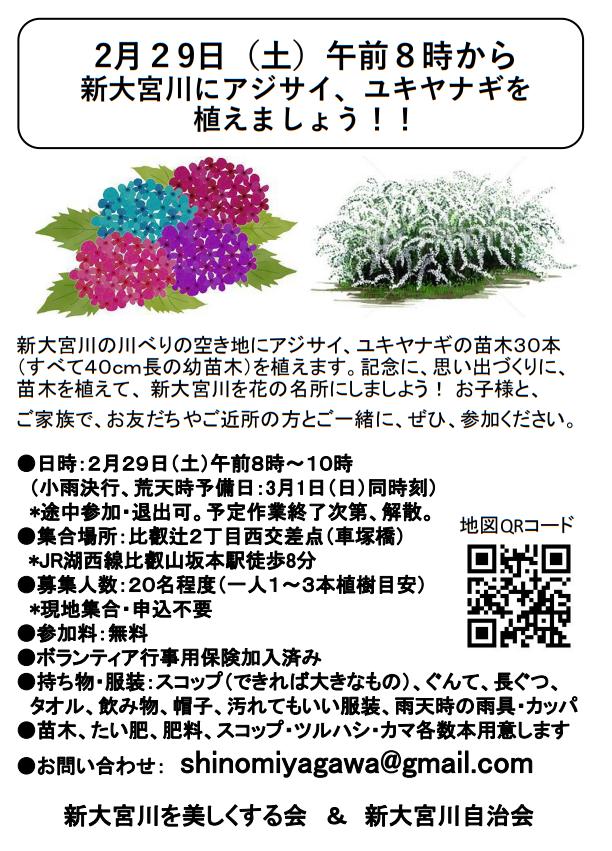 大津市・新大宮川でアジサイ・ユキヤナギの植樹が行われます。