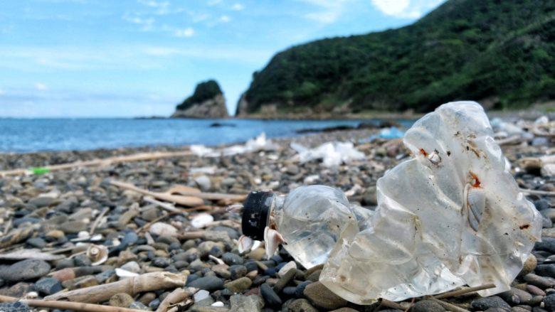 琵琶湖におけるマイクロプラスチック問題~私たちだからこそできる事~