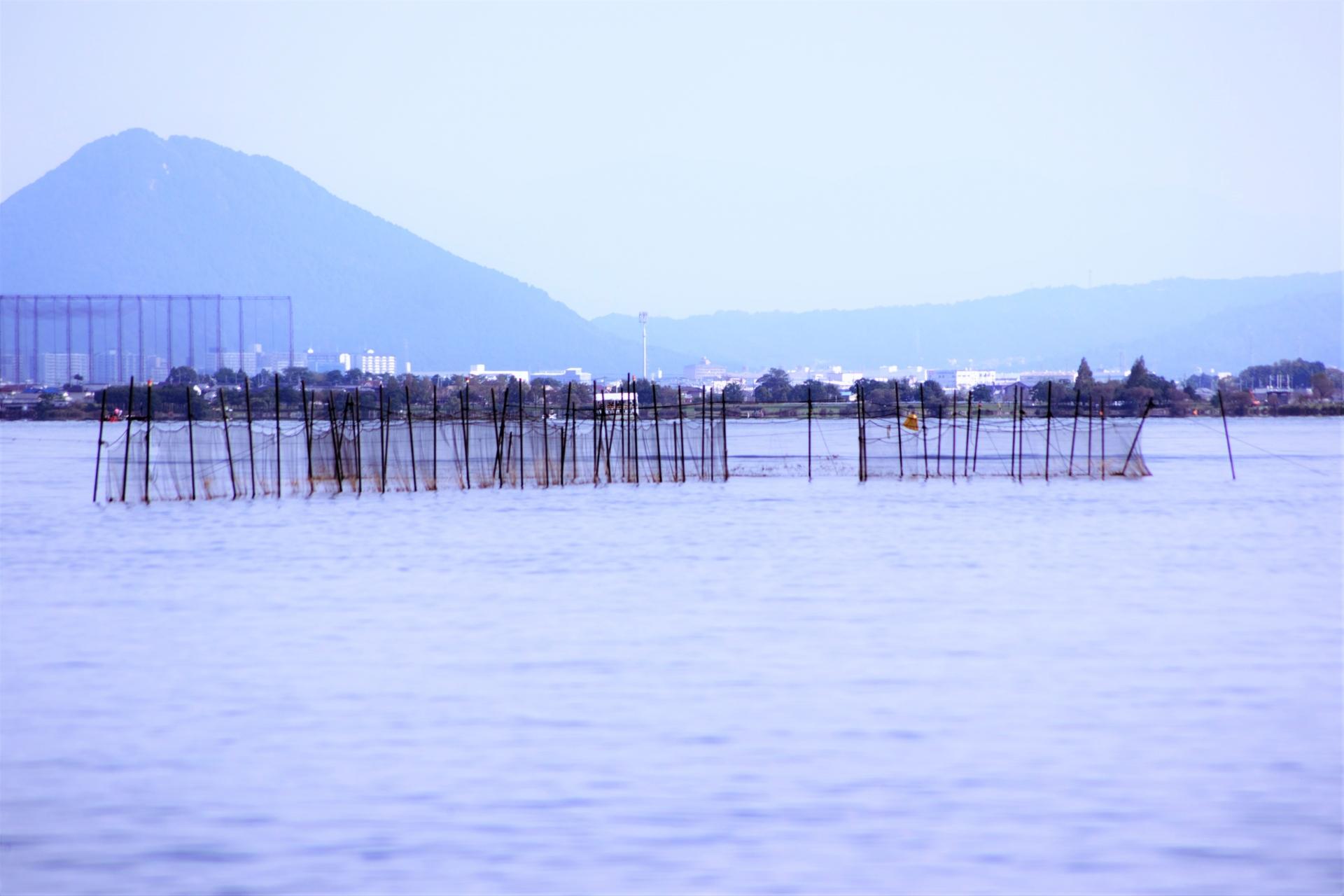 琵琶湖の伝統漁法「魞漁(えりりょう)」