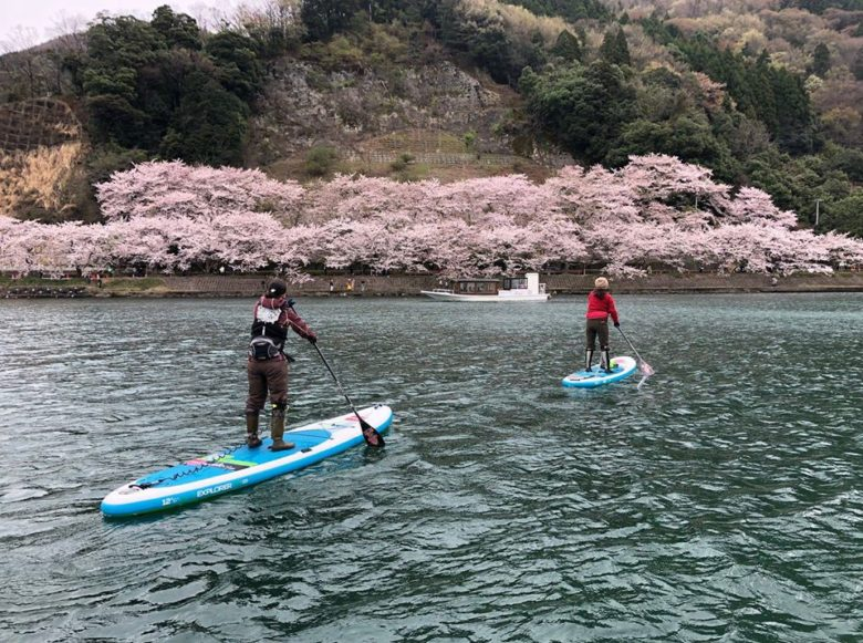 奥琵琶湖の桜スポット「海津大崎」を水上から ! 環境にやさしいクルージング
