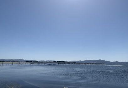 赤野井湾を美しく!「赤野井湾流域の流出水対策」
