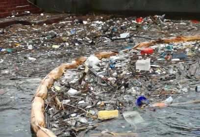 藻がマクロプラスチックを食べる?!新しい下水処理実験 長浜バイオ大学