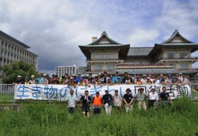 琵琶湖のシジミ復活大作戦 二枚貝のすみやすい環境整備を目指す「里湖づくり」プロジェクト