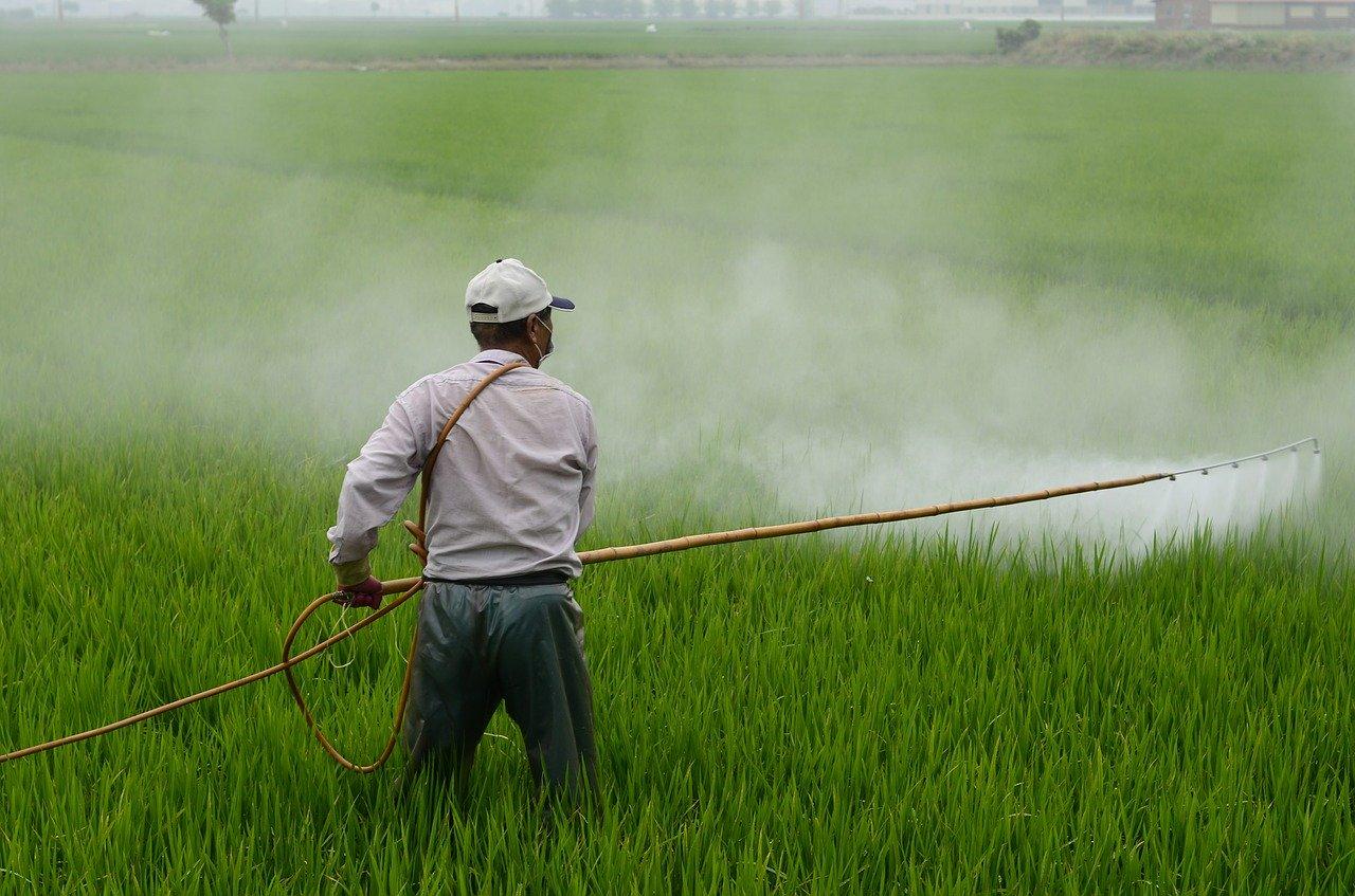 琵琶湖へ流れ込む農薬が及ぼす生き物への影響 滋賀県の取組みは?