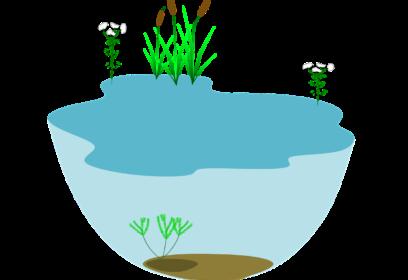 日本一の面積、貯水量を誇る琵琶湖はどれだけ大きいのか。いろいろなものと比較してみた